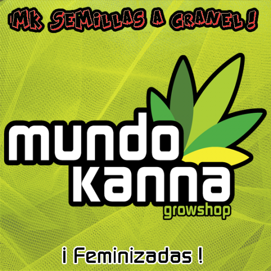Feminizadas MK