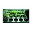 Sistema de Cultivo IGS