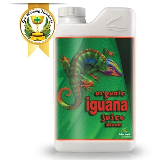 Organic Iguana Juice Bloom
