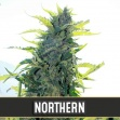 Northern Automatic