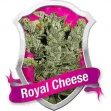 Royal Cheese