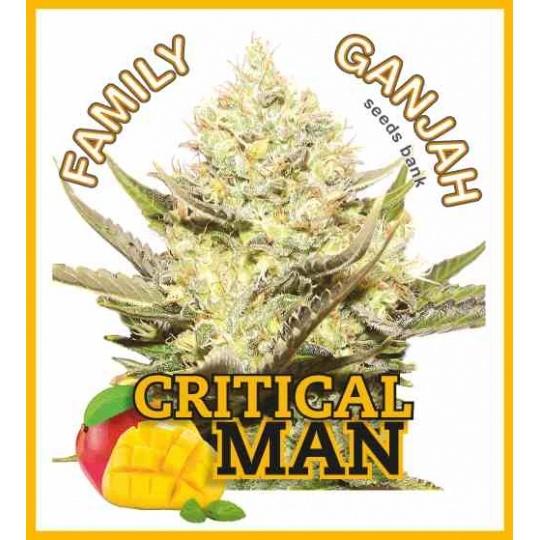 Critical Man