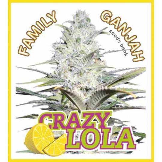 Crazy Lola